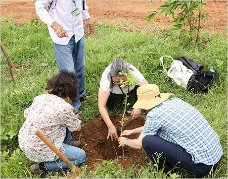 people are planting trees at kanha shnativanam
