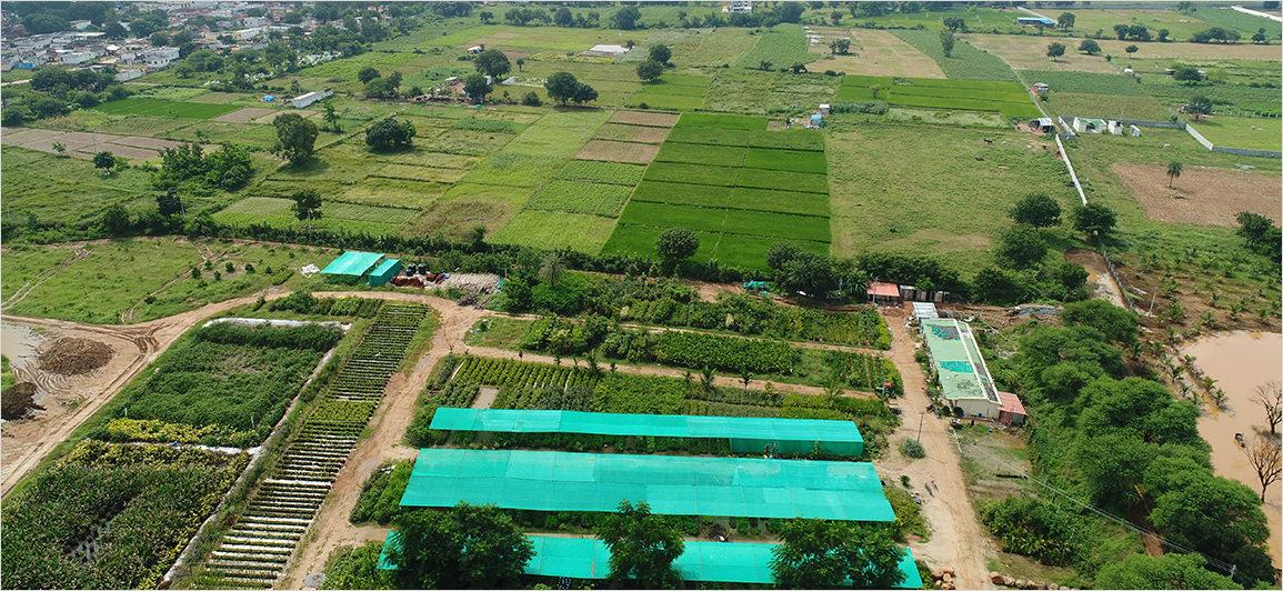 Kanha Shantivanam environment