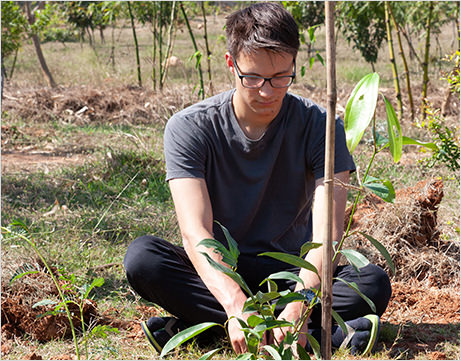 foreigner is planting tress at Kanha