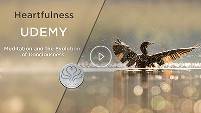 heartfulness meditation udemy classes
