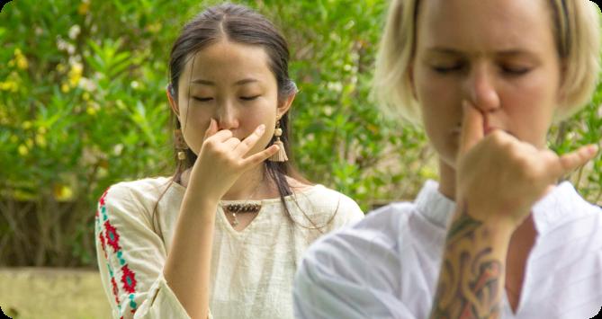 heartfulness meditation retreat