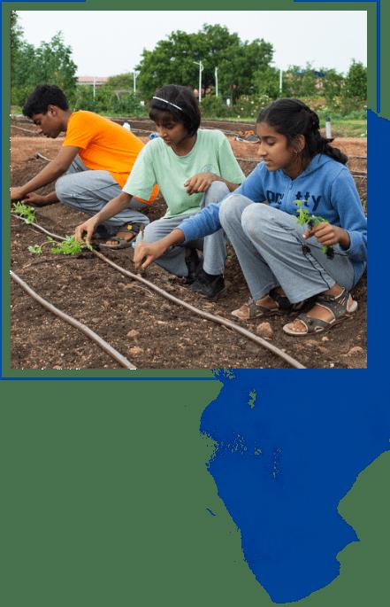 children plating trees at kanha shanti vanam